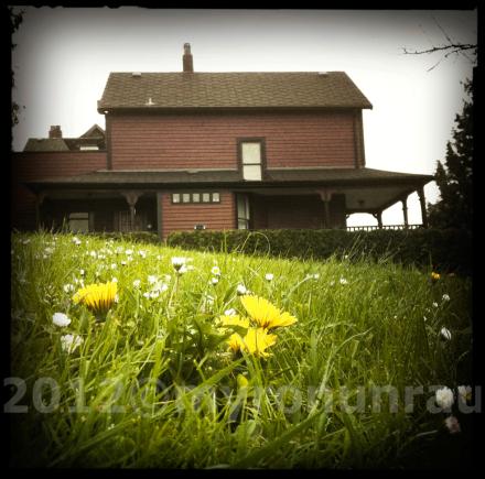 ©iphoneographythis 2012©myronunrau